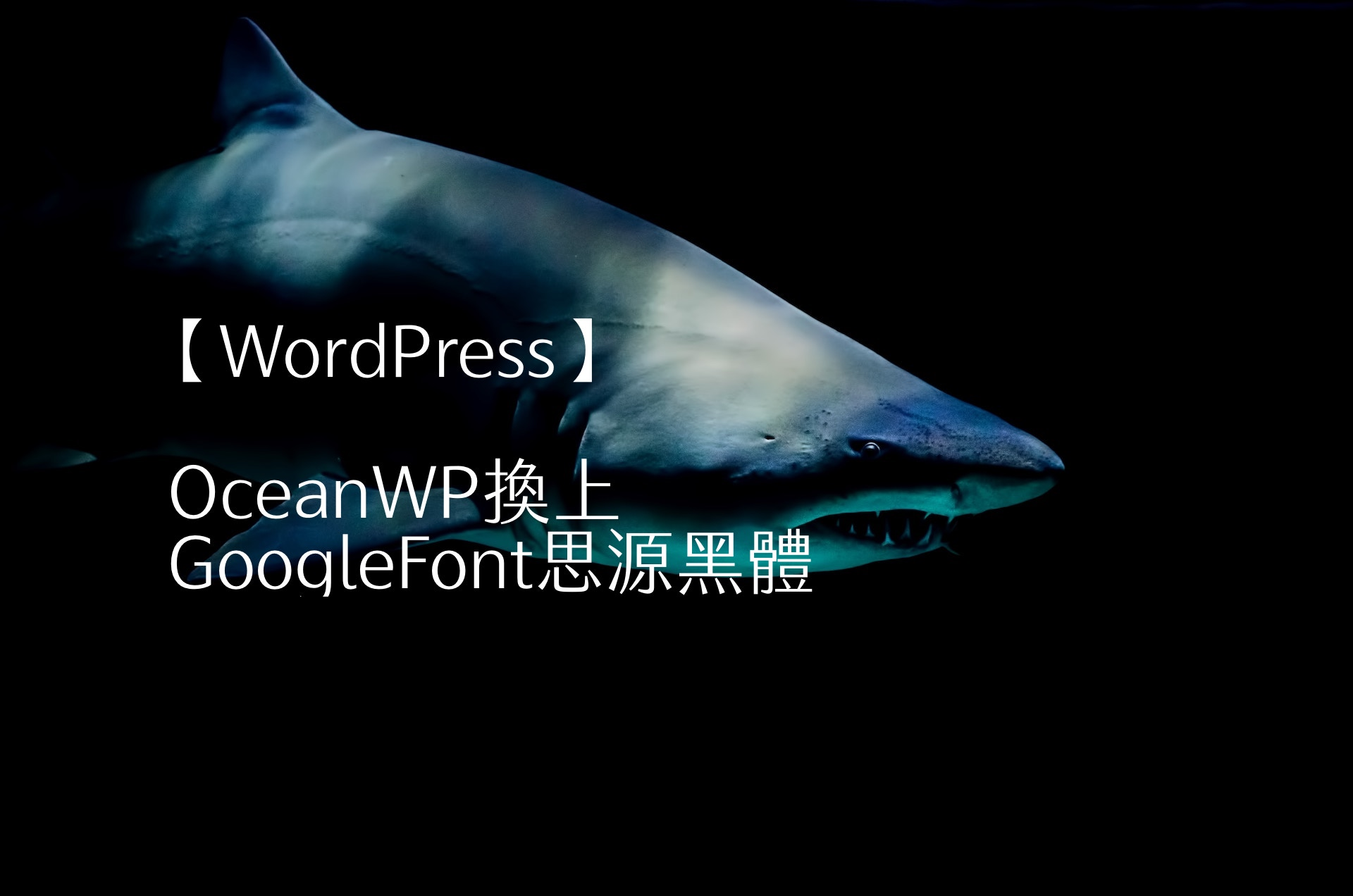 【WordPress】OceanWP換上GoogleFont思源黑體 1